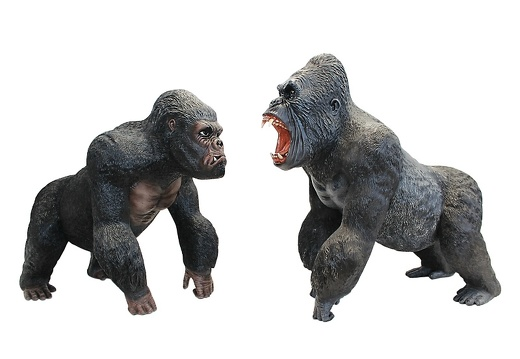 144 LIFE LIKE PAIR OF SILVER BACK MALE GORILLAS