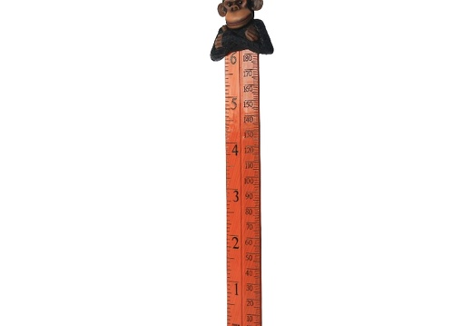 B0423 FRIENDLY FUNNY MONKEY HOW TALL ARE YOU RULER 2