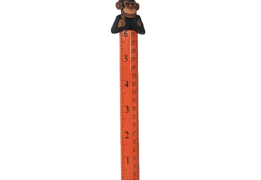 B0423 FRIENDLY FUNNY MONKEY HOW TALL ARE YOU RULER 3