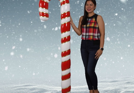 1587 6 FOOT CHRISTMAS CANDY CANE 1
